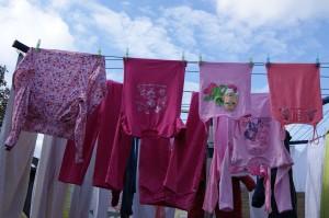 verkleind-roze-was