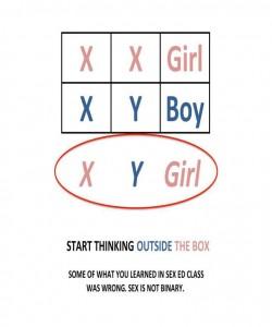 xy-girl