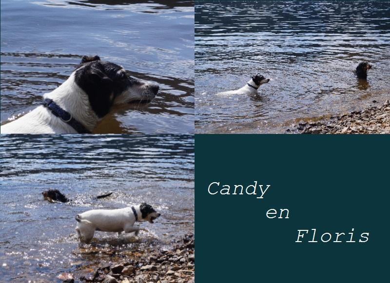 candy-en-floris