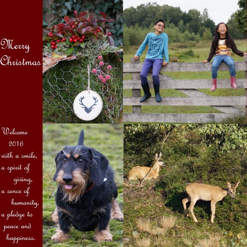 blog-kerstkaart