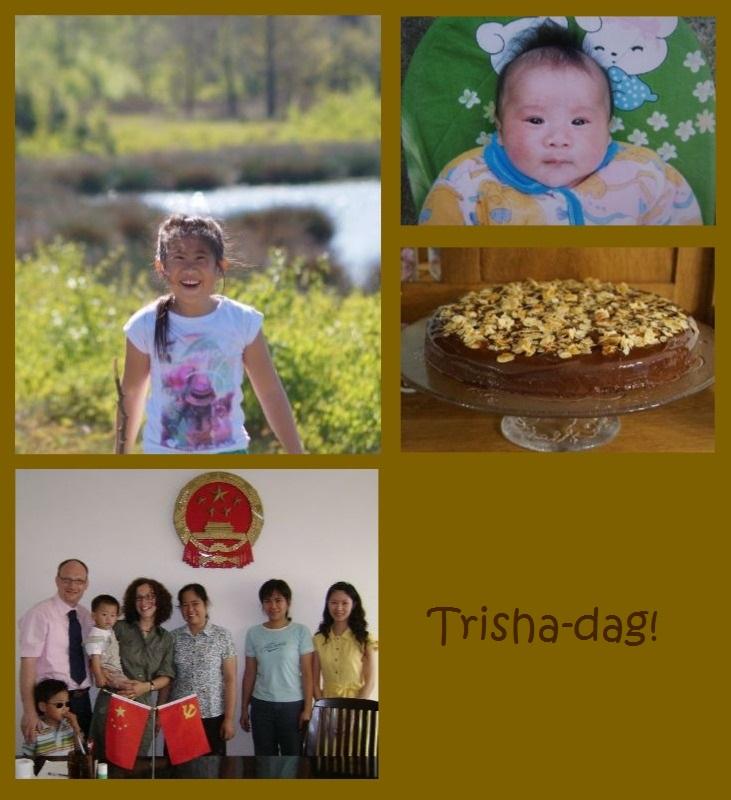 trisha-dag-16-06-2016